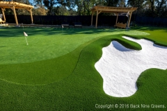 Backyard Luxury Golf Green