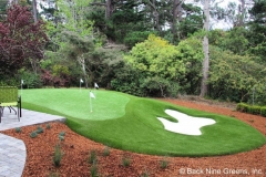 putting-green-in-woods
